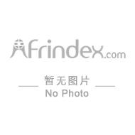 NIPPON ELECTRONICS IND LTD